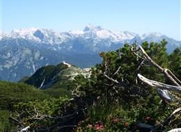 Slovinsko - Julské Alpy - nejvyšší hora Slovinska Triglav