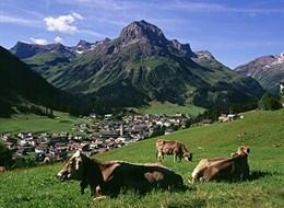 Lechtalské Alpy 2020  Rakousko - Lech am Arlberg - uprostřed hor a pastvin