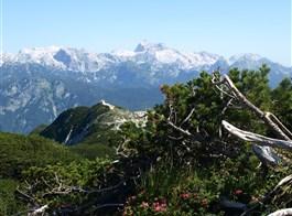 Putování a relaxace v Julských Alpách 2020  Slovinsko - Julské Alpy - Triglav přes kosodřevinu