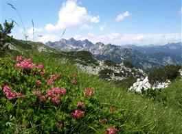 Slovinsko, hory, moře a jeskyně podzim 2020   Slovinsko - Julské Alpy - pod Voglem