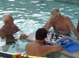 Budapešť, Bratislava, Dunajský ohyb, památky a termální lázně 2021  Maďarsko - Budapešť - Szechenyiho lázně, šachisté v bazénu