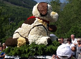 Narcisový festival v Solné komoře a Tauplitzalm 2021 Bavorsko Rakousko - Bad Ausse - Narcisový festival