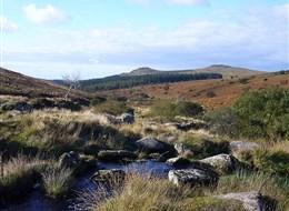 V.Británie - Anglie - NP Dartmoor - Sharpitor