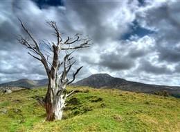 Irsko - NP Connemara