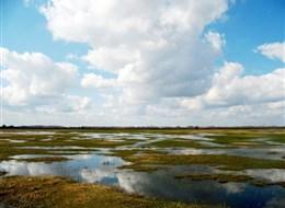 Maďarsko - NP Körös-Maros, kraj nebe a roviny