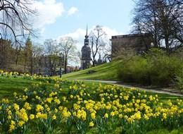 Německo - Drážďany v jarním hávu.