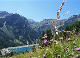 Passo Tonale - ráj pod ledovcem s kartou 2020 Dolomity Itálie - Lago di Pian Palú