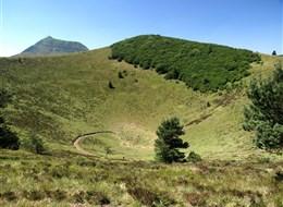 Francie - Auvergne - vulkanický  kráter Puy de Pariou je hluboký 96 m a má obvod 950 m