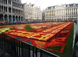 Belgie, umění, památky UNESCO, gastronomické zážitky či květinový koberec 2021  Belgie - Brusel, květinový koberec, vždy na svátek Nanebevzetí P.Marie