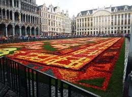 Belgie, umění, památky UNESCO, gastronomické zážitky či květinový koberec 2020 Holandsko Belgie - Brusel, květinový koberec, vždy na svátek Nanebevzetí P.Marie