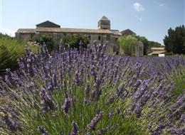 Provence s vůní levandule a koupáním, letecky 2020  Francie - Provence - St.Paul de Mausolée, jak lehce se vcítíš do Goghových obrazů