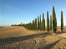 Pěšky po kraji Toskánsko a údolí UNESCO Val d'Orcia 2021  Itálie - Toskánsko - údolím Val d´Orcia se vine malebná Via Francigena (foto R.Machan)