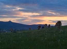 Libereckým krajem křížem krážem 2020 Beskydy a Slezsko Česká republika - Ještědský hřeben, výrazná dominanta celého regionu