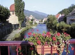 Alsasko,Schwarzwald, Vogézy, zážitky na vinné stezce 2021 Alsasko Francie -  Alsasko - městečko Thann