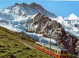 Švýcarskem za bernardýny, nejvyšší horou a ledovcem 2020  Švýcarsko, Jungfrau