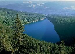 Krásy Šumavy, hory, jezera a slatě (i Bavorský les) 2020 Česká republika ČR, Šumava, Černé jezero