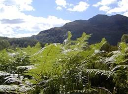 Velká Británie - Anglie, Skotsko, Wales letecky 2020  Velká Británie, Skotsko, jezerní kraj The Trossachs
